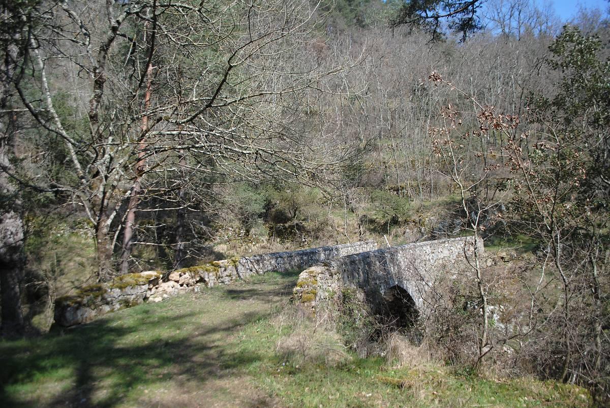 pont de vaneilles a saint michel de chabrillanoux