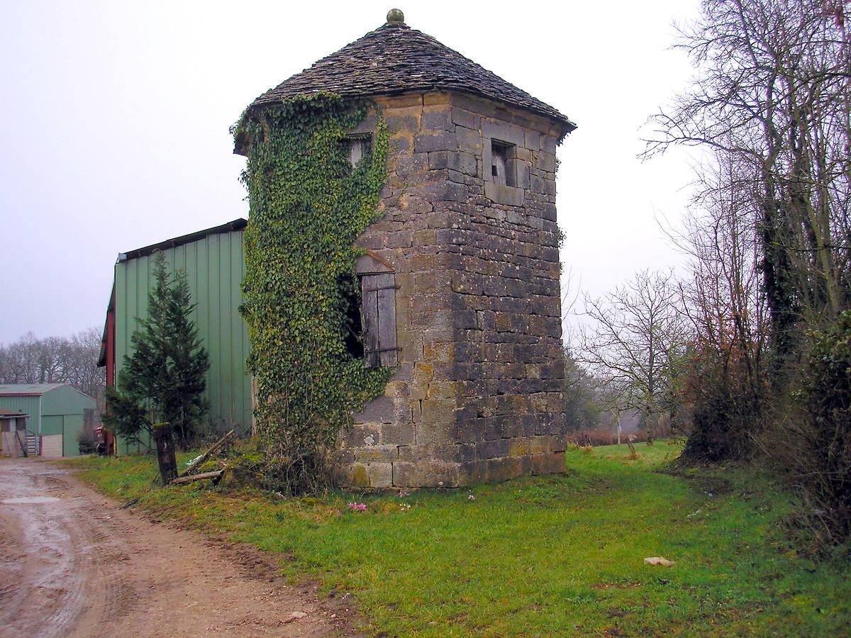 les projets de la fondation du patrimoine