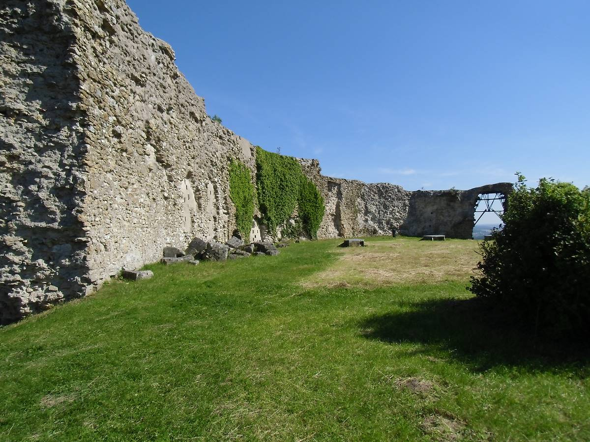 RUINES DU CHATEAU DE MOUSSON