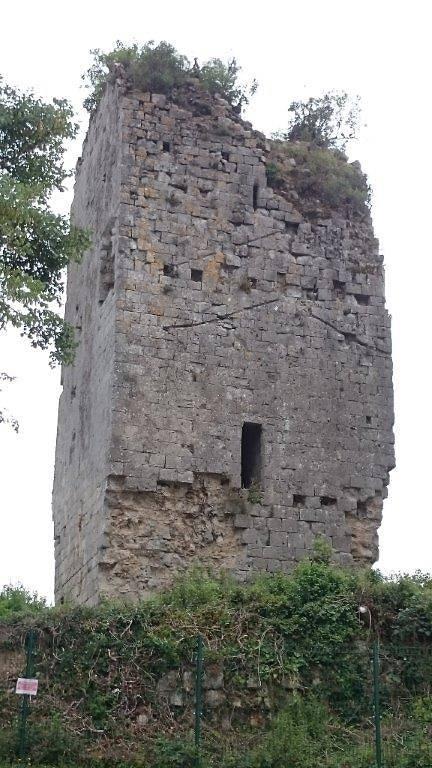 Ruines du Château de Montgaillard